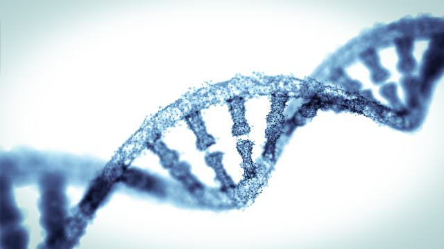 New research flags possible genetic link to homosexuality
