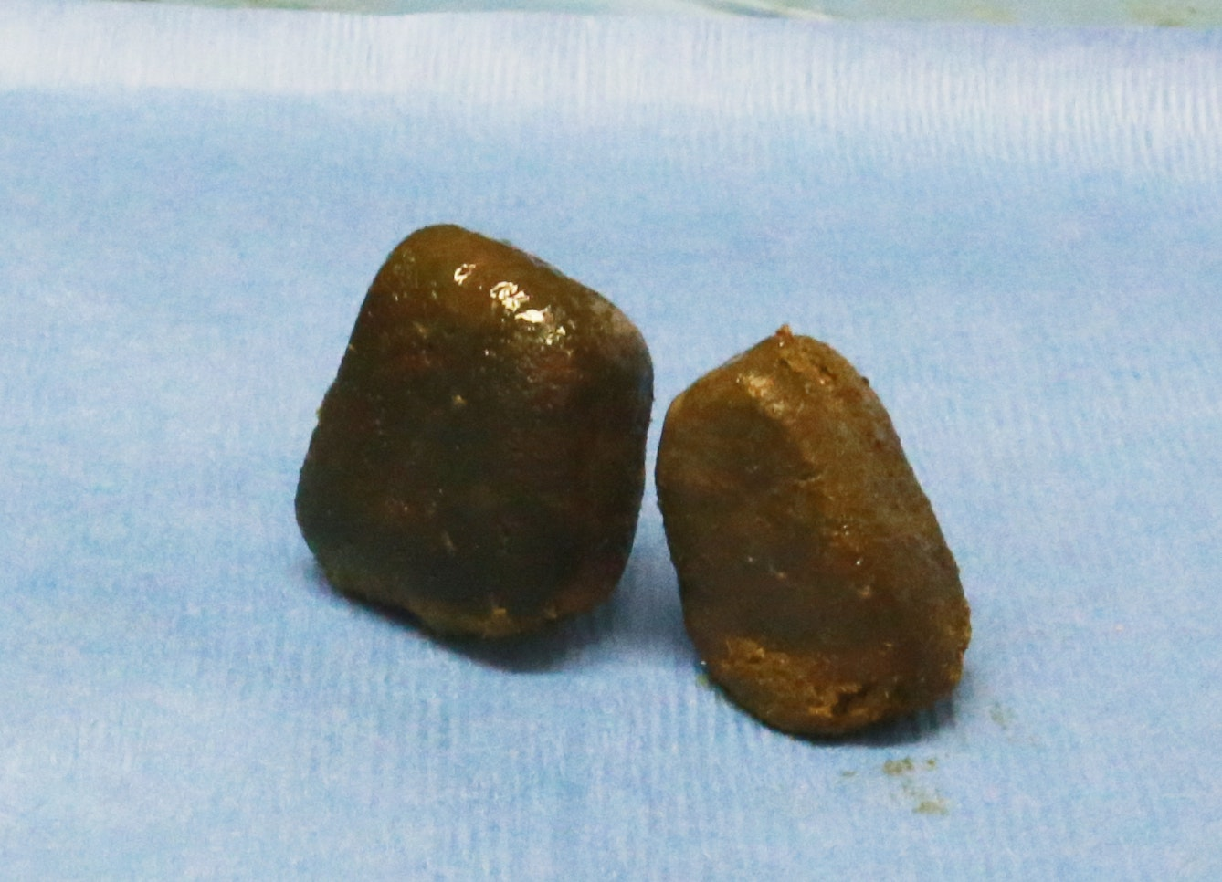 wombat poo cube shape ignobel
