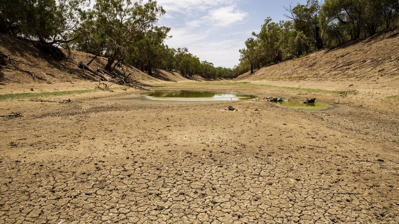 Darling River drought