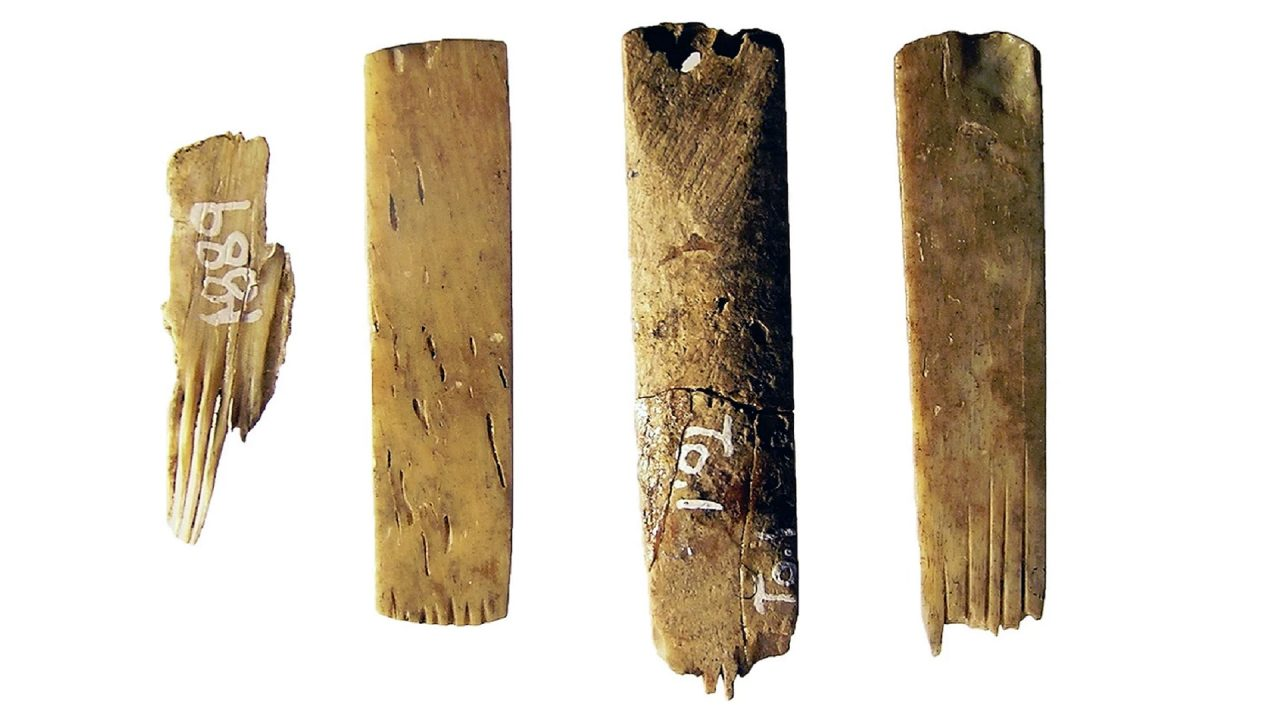 Australia's Science Channel | Archaeologists find world's oldest