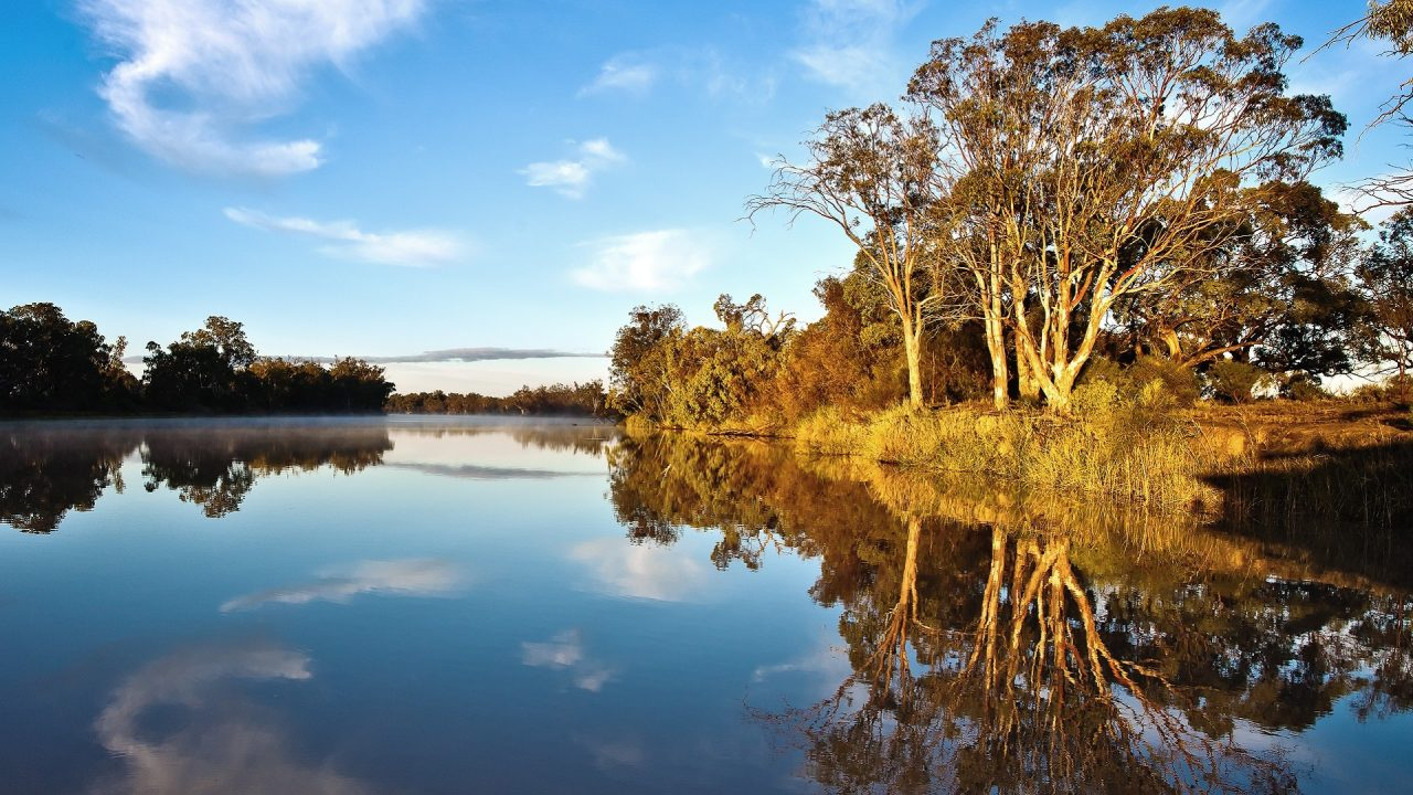 Murray River bank sunrise Australia