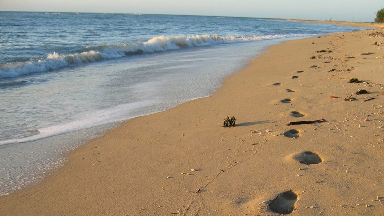 first Australians migration beach footsteps