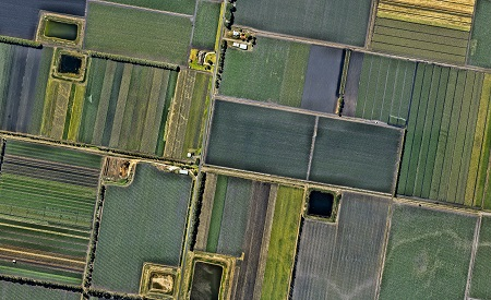 groundwater_farming land_the planet