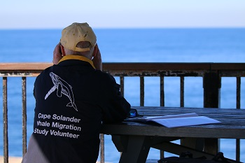 citizen science_whale watching_cape solander whale migration study