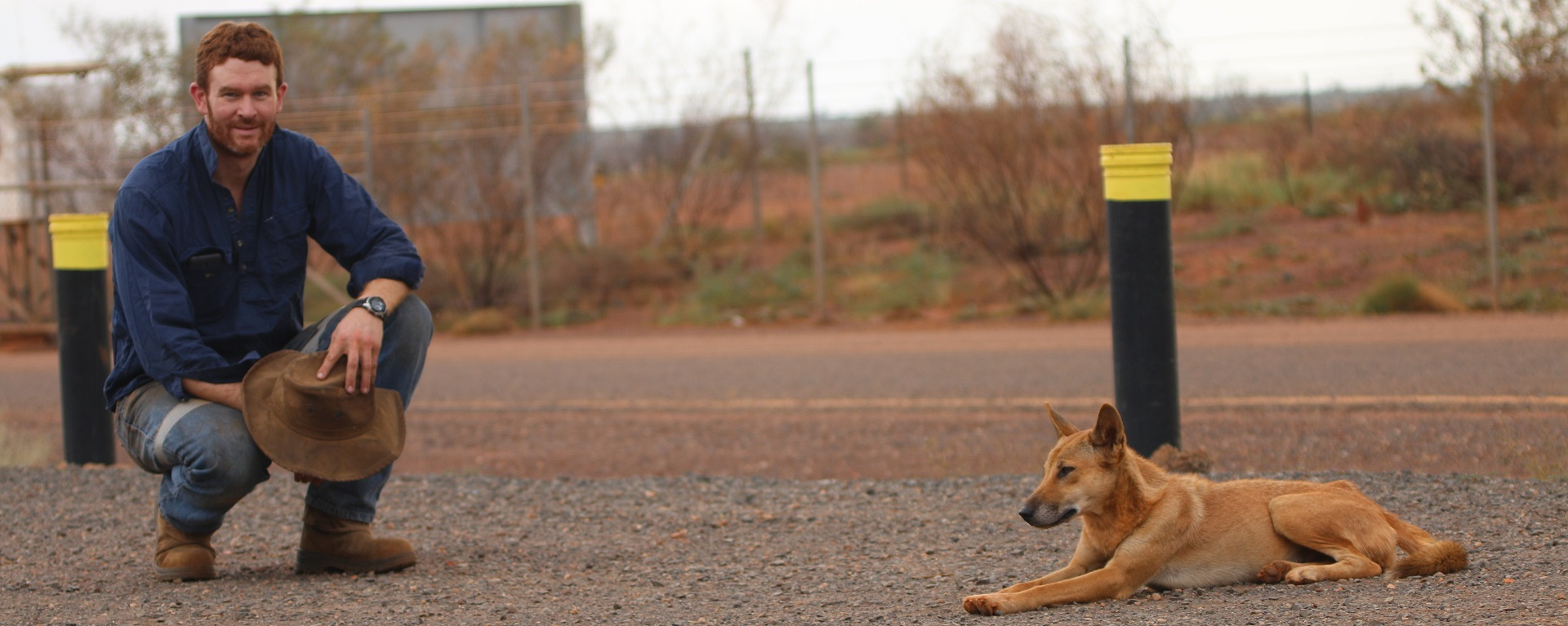 Thomas Newsome in the field with a dingo. Climate Emergency declaration