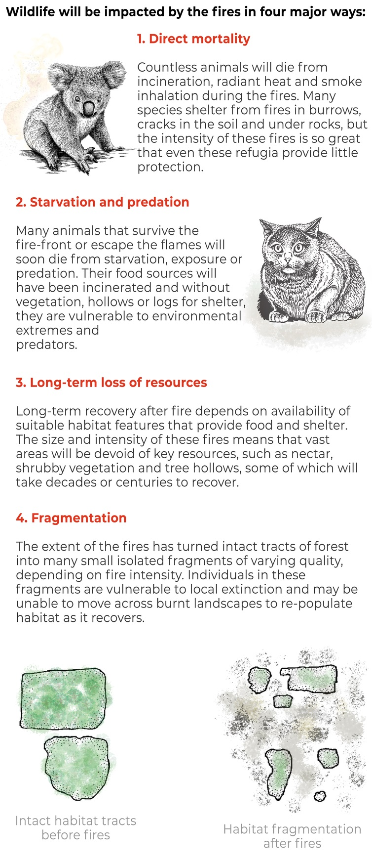 threatened species habitat_fire affected species_bushfire impacts