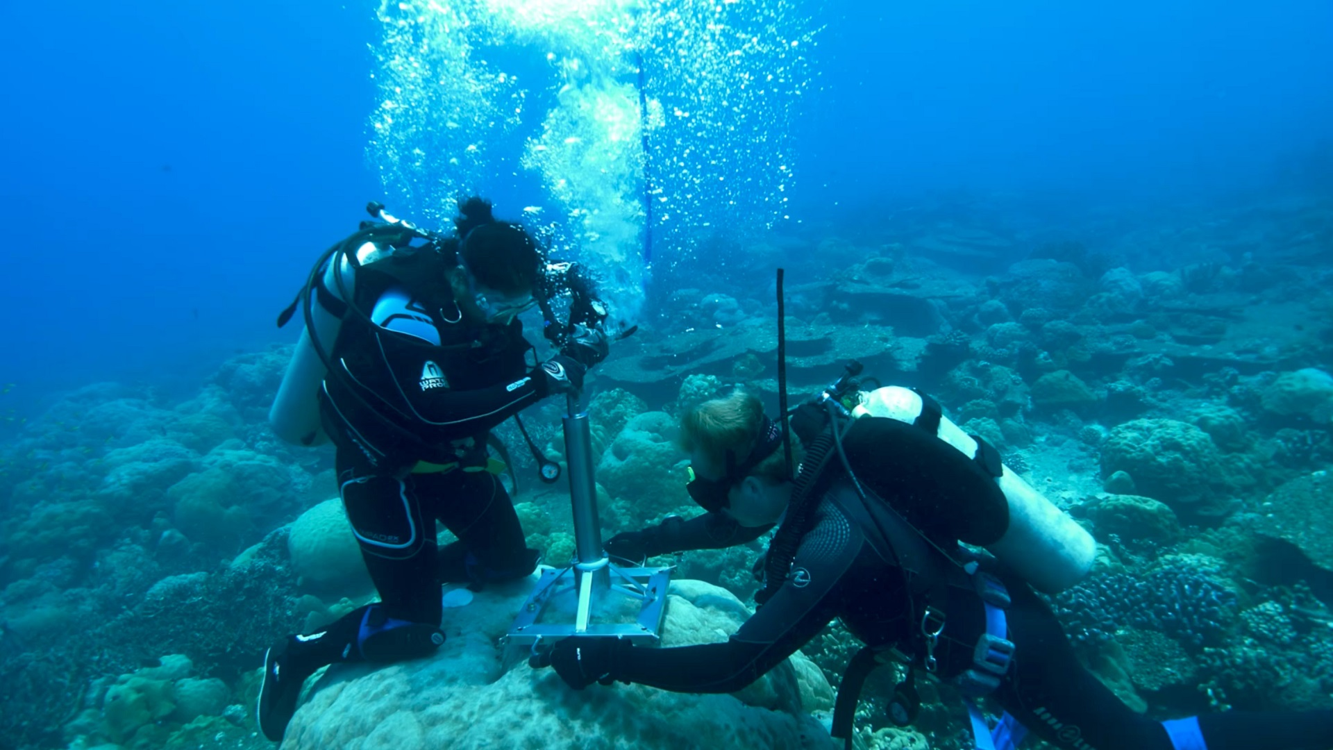 indian ocean dipole_corals_coral drilling