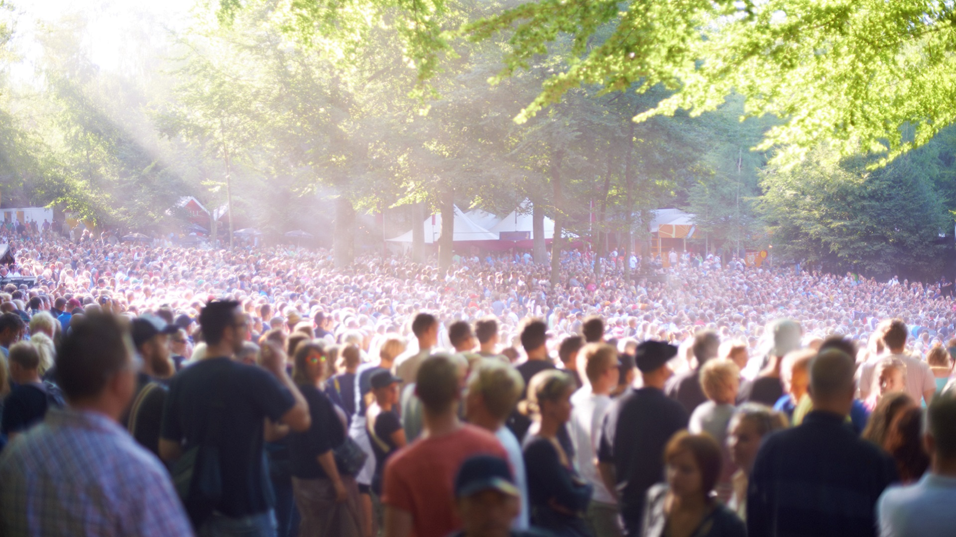 mass gathering_public event_crowd