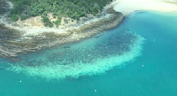 bleached coral from the air