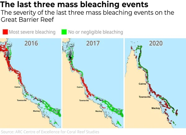 map of great barrier reef coral bleaching