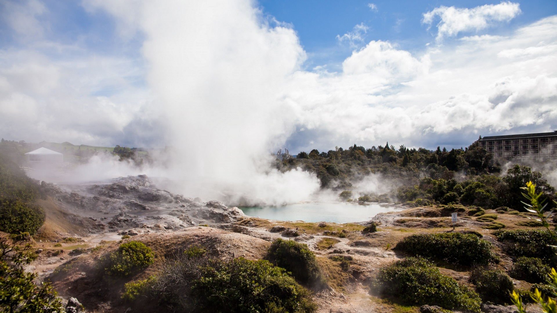hot springs_origins of life on earth_new zealand
