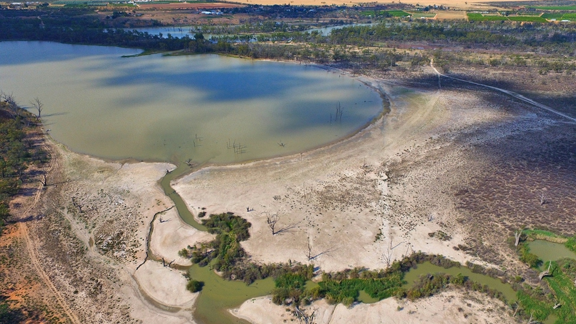 The environment loses as subsidies drive Murray-Darling Basin extractions