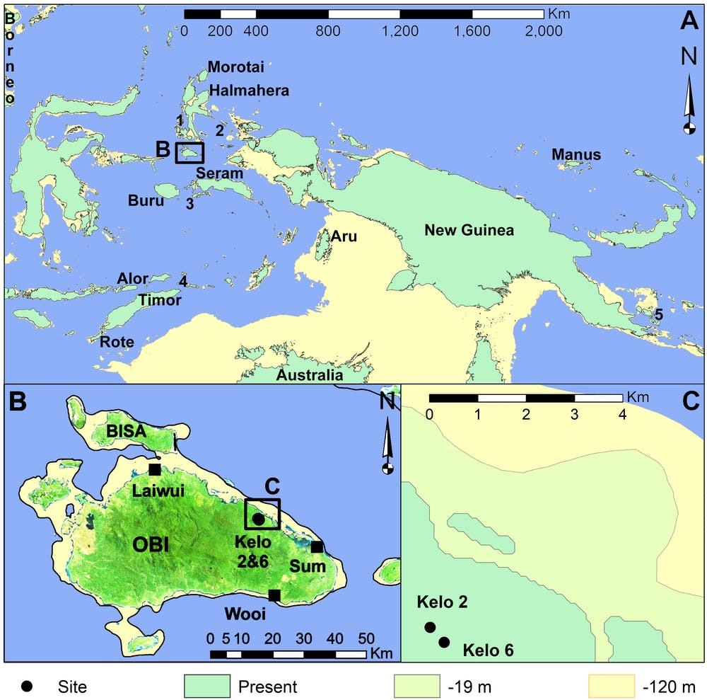 Location of the Obi Islands north of Australia where ancient stone tools were found